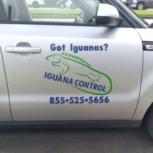 iguana control car